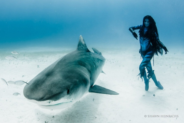 "Photo shopped image of a woman ""dancing"" with Tiger Sharks."