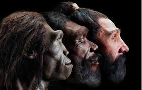 """Neanderthal """"upgrade""""to white since we had sex with them."""