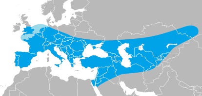 Neanderthal: general extent of occupation.
