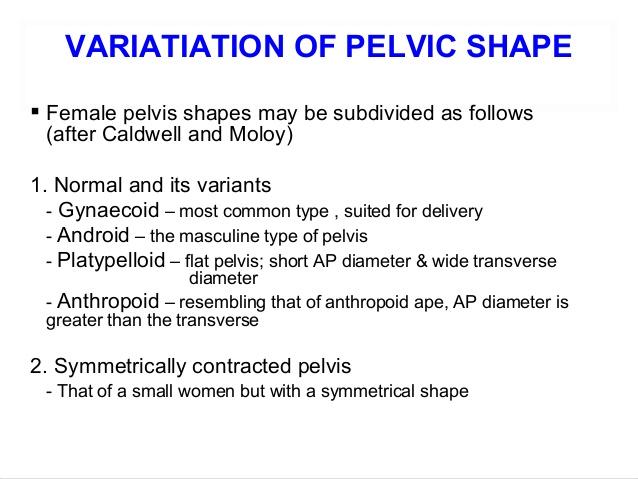 Female Pelvis Asperger The Hyposocial Human