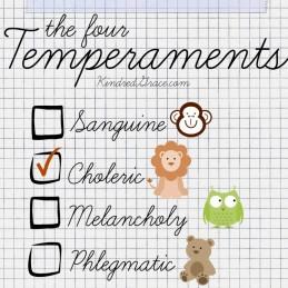 four-temperaments-750x750