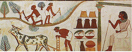 Farming-in-ancient-Egypt