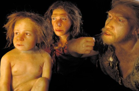 neanderthal family 2