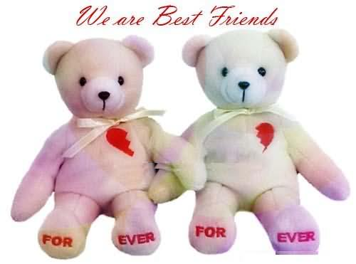 we-are-best-friends-forever-teddy-bear-graphic
