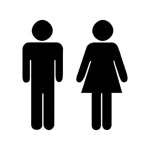 Where men and women gather socially and observe their behavior toward each other, especially their attracting?