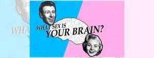 sex-brains