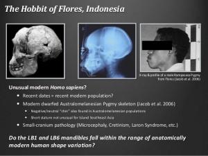 ippa-cambodia-talk-lb1-mandible-4-638