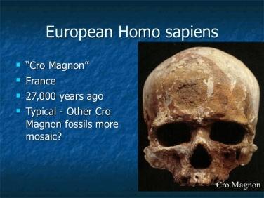 chapter-13-origin-dispersal-and-bioarchaeology-of-homo-sapiens-part-1-28-728